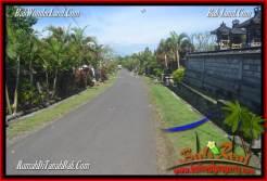 Affordable PROPERTY LAND IN TABANAN FOR SALE TJTB277