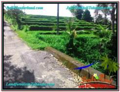 Tabanan Penebel BALI LAND FOR SALE TJTB305
