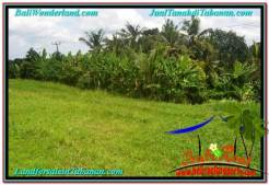 Magnificent PROPERTY 3,500 m2 LAND IN Tabanan Kerambitan FOR SALE TJTB302