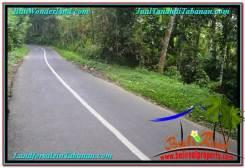 Beautiful PROPERTY Tabanan Penebel 2,000 m2 LAND FOR SALE TJTB303