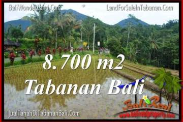 Beautiful 8,700 m2 LAND SALE IN TABANAN BALI TJTB316