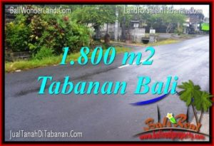 FOR SALE Affordable PROPERTY 1,800 m2 LAND IN TABANAN BALI TJTB321