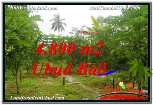 Magnificent PROPERTY Ubud Payangan 4,800 m2 LAND FOR SALE TJUB571