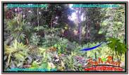 Exotic PROPERTY 600 m2 LAND FOR SALE IN CANGGU BALI TJCG211