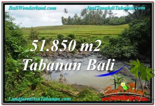Beautiful 51,850 m2 LAND SALE IN TABANAN BALI TJTB289