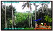 FOR SALE Affordable PROPERTY 65,450 m2 LAND IN TABANAN BALI TJTB290