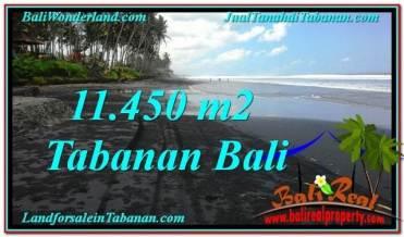 FOR SALE Affordable PROPERTY 11,450 m2 LAND IN TABANAN BALI TJTB291