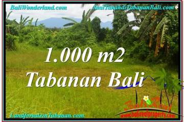 Magnificent PROPERTY Tabanan Selemadeg 1,000 m2 LAND FOR SALE TJTB311