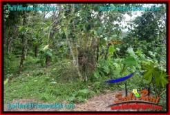 FOR SALE Affordable PROPERTY LAND IN Tabanan Penebel TJTB317