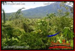 Exotic 3,200 m2 LAND SALE IN TABANAN TJTB319