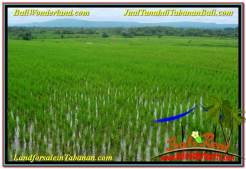 FOR SALE Beautiful PROPERTY 1,000 m2 LAND IN TABANAN TJTB307