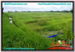 Magnificent 1,400 m2 LAND SALE IN TABANAN TJTB309