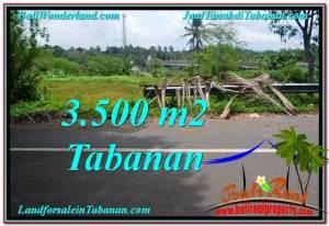 FOR SALE Affordable PROPERTY 3,500 m2 LAND IN TABANAN BALI TJTB298