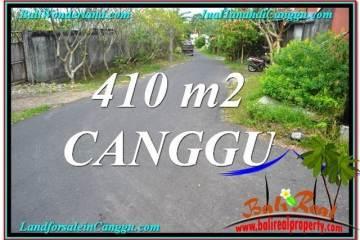 FOR SALE Beautiful LAND IN Canggu Pererenan TJCG216