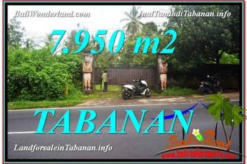 Exotic PROPERTY 7,950 m2 LAND FOR SALE IN Tabanan Bedugul TJTB331