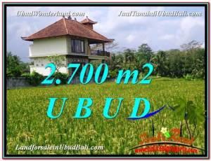 2,700 m2 LAND IN UBUD BALI FOR SALE TJUB595