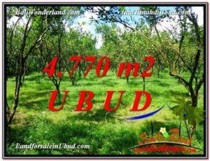 FOR SALE Affordable 4,770 m2 LAND IN UBUD TJUB598