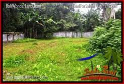 Exotic 4,850 m2 LAND FOR SALE IN Tabanan Bedugul TJTB330