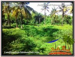 Tabanan Selemadeg BALI 11,600 m2 LAND FOR SALE TJTB327