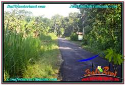 Magnificent PROPERTY 8,100 m2 LAND FOR SALE IN TABANAN BALI TJTB329