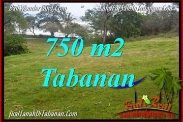Beautiful PROPERTY Tabanan Selemadeg 750 m2 LAND FOR SALE TJTB346