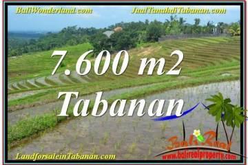 7,600 m2 LAND IN Tabanan Selemadeg BALI FOR SALE TJTB347