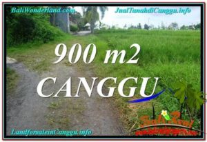 Affordable 900 m2 LAND IN CANGGU FOR SALE TJCG215