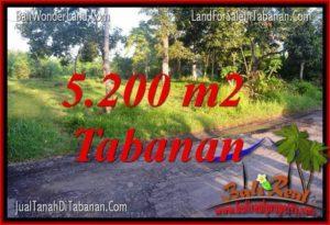 Beautiful 5,200 m2 LAND IN TABANAN FOR SALE TJTB334