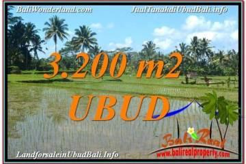 3,200 m2 LAND SALE IN UBUD TJUB628