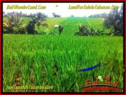 Beautiful PROPERTY TABANAN BALI LAND FOR SALE TJTB338