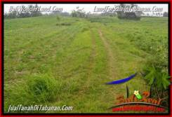 Magnificent LAND FOR SALE IN TABANAN TJTB346