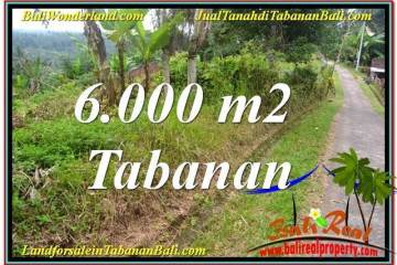 Affordable Tabanan Selemadeg LAND FOR SALE TJTB349