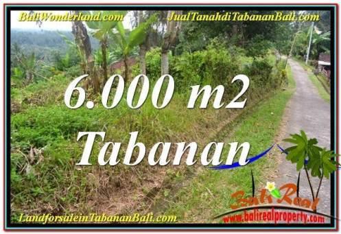 Affordable Tabanan Selemadeg LAND FOR SALE TJTB349
