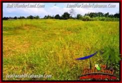 Beautiful LAND IN TABANAN FOR SALE TJTB351