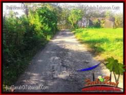 Affordable PROPERTY 4,000 m2 LAND IN TABANAN FOR SALE TJTB352
