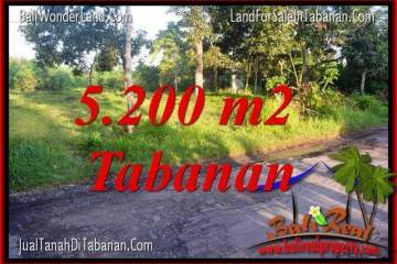 Magnificent PROPERTY 5,200 m2 LAND FOR SALE IN TABANAN BALI TJTB334