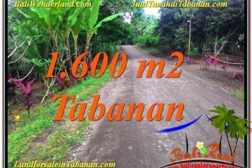 Affordable PROPERTY 1,600 m2 LAND IN TABANAN FOR SALE TJTB337