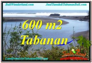 FOR SALE Magnificent LAND IN Tabanan Selemadeg TJTB344