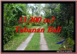 Affordable TABANAN BALI 13,200 m2 LAND FOR SALE TJTB255