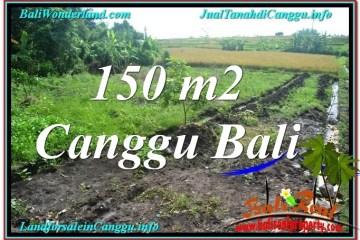 Beautiful PROPERTY 150 m2 LAND SALE IN CANGGU BALI TJCG213