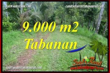Exotic Tabanan Selemadeg Timur LAND FOR SALE TJTB364