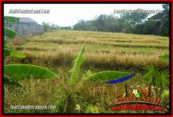 Magnificent PROPERTY 800 m2 LAND IN CANGGU BALI FOR SALE TJCG221