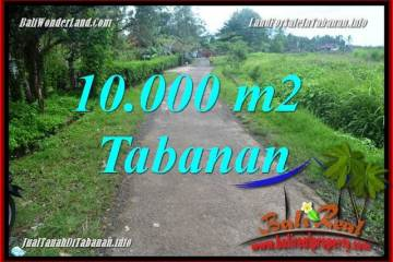 LAND FOR SALE IN Tabanan Selemadeg TJTB354