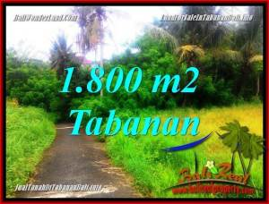 FOR SALE Magnificent 1,850 m2 LAND IN Tabanan Selemadeg BALI TJTB357