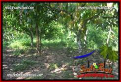 FOR SALE Exotic PROPERTY 10,100 m2 LAND IN Tabanan Selemadeg Barat TJTB360