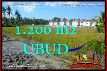 Magnificent 1,200 m2 LAND SALE IN UBUD BALI TJUB663