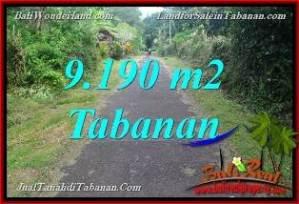 Affordable PROPERTY 9,190 m2 LAND SALE IN Tabanan Selemadeg Timur BALI TJTB368