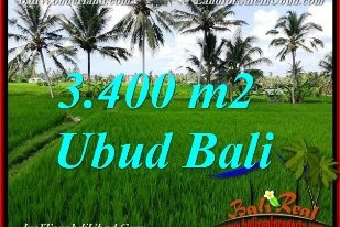 FOR SALE Beautiful PROPERTY LAND IN Ubud Pejeng BALI TJUB656