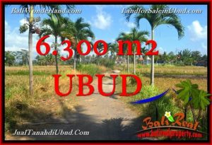 FOR SALE Exotic 6,300 m2 LAND IN UBUD TJUB662