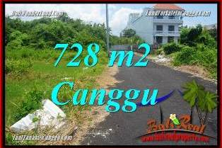 FOR SALE Affordable 728 m2 LAND IN CANGGU BALI TJCG222